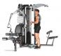FINNLO MAXIMUM M5 multi-gym biceps se spodní kladkou